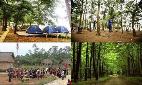 Khu du lịch sinh thái Đồng Mô 2