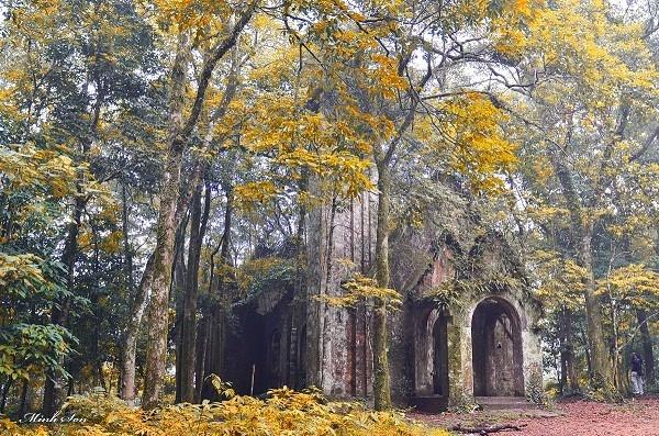 Nhà thờ đổ Ba Vì